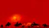 《荒野大鏢客Online》上線 R星希望玩家積極反饋