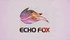 電競俱樂部Echo Fox正式關閉 選手已全部離開