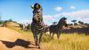 《動物園之星》新DLC發布 鬼才主播開門營業花式翻車