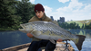 《The Catch: Carp & Coarse》將登陸Steam