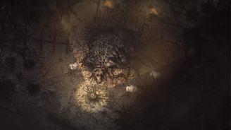 《陰暗森林》成就一覽
