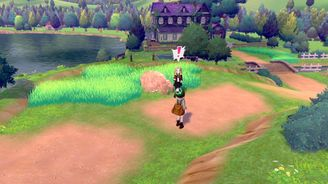 《寶可夢:劍/盾》巢穴資料——曠野地帶-牙牙湖東岸