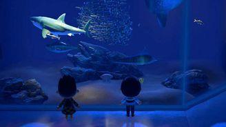 《集合啦!動物森友會》南半球9月新增昆蟲魚類一覽