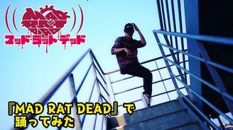 《狂鼠之死》公布全新宣傳影像