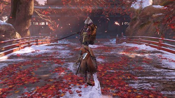癱瘓玩家成功擊殺《只狼》破戒僧 反對簡單難度