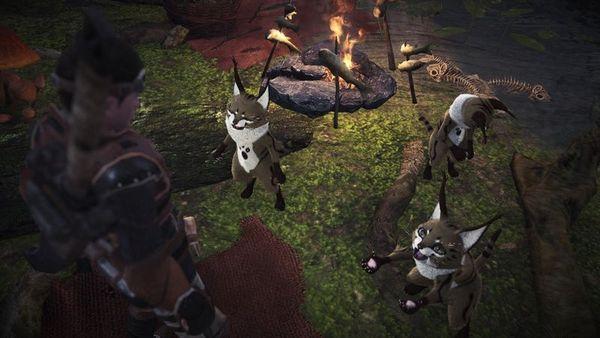 《怪物獵人世界 Iceborne》全寶物收集攻略 冰原地圖寶物在哪里