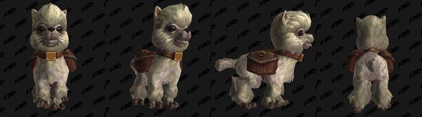 《魔獸世界》PTR加入今年慈善小寵物:多蒂
