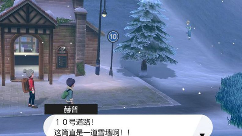 《寶可夢:劍/盾》10號道路介紹